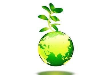 Meio Ambiente no Mundo Fitness